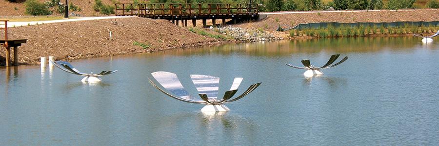 Mirror Mirror on the Lake