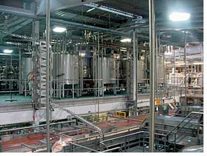 Ardmona tomato processing plant constructed entirely in stainless steel using grade 304.